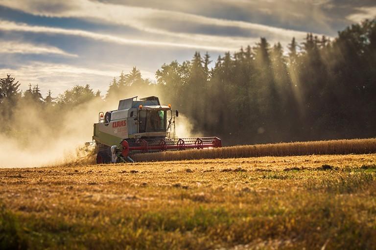 Domaine de compétences - Agriculture